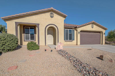 Pima County Single Family Home Active Contingent: 4895 E Silverpuffs Way