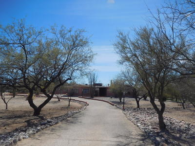 Pima County, Pinal County Single Family Home For Sale: 3720 N Gunnison Drive