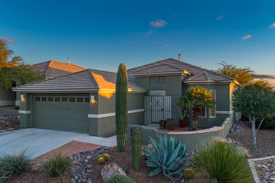 Marana Single Family Home For Sale: 5369 W Christmas Cholla Street