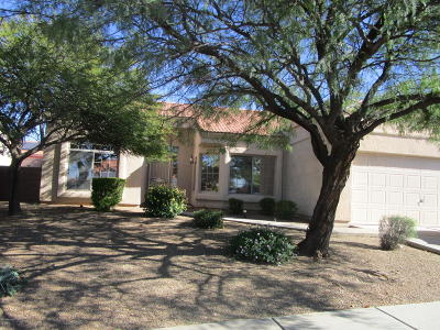 Pima County, Pinal County Single Family Home Active Contingent: 1111 S Paperflower Avenue