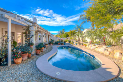 Oro Valley Single Family Home For Sale: 246 W Geeseman Springs Drive