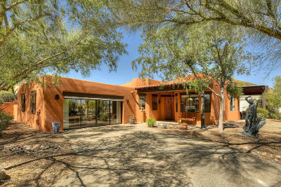 Pima County Single Family Home For Sale: 1921 S Doubletree Lane