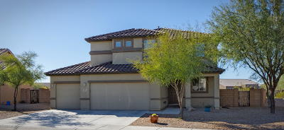 Marana Single Family Home Active Contingent: 14171 N Bronze Statue Avenue