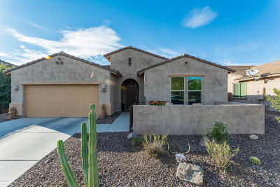 Oro Valley Single Family Home For Sale: 12853 N Via Vista Del Pasado