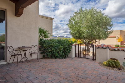 Tubac Single Family Home For Sale: 117 Circulo Sabino