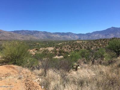 Residential Lots & Land For Sale: N Rincon Mountain View Road