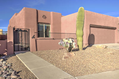 Pima County, Pinal County Single Family Home Active Contingent: 7657 E Sierra Park Loop