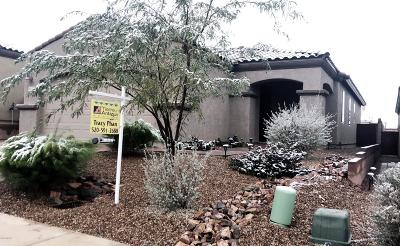 Pima County, Pinal County Single Family Home For Sale: 1110 S Red Colt Road