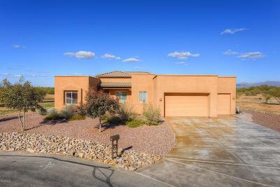 Tucson Single Family Home For Sale: 13136 W Summer Poppy Street