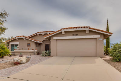 Oro Valley Single Family Home For Sale: 14344 N Sky Trail