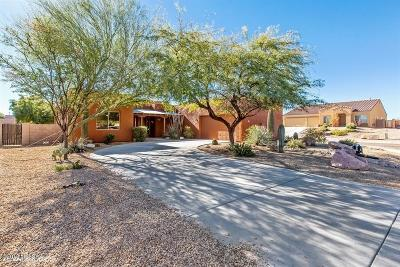 Tucson Single Family Home For Sale: 8059 W Black Eagle Court