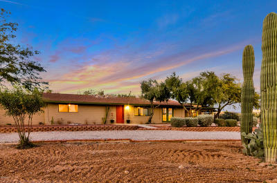 Tucson Single Family Home For Sale: 3100 W Lynne Place