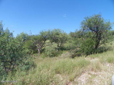 Rio Rico Residential Lots & Land For Sale: 625 Zaire Court #61