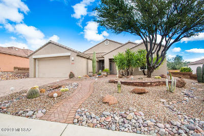 Marana Single Family Home For Sale: 13730 N Heritage Canyon Drive