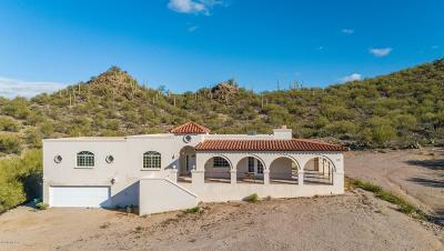 Pima County Single Family Home For Sale: 6239 S Speaks Trail
