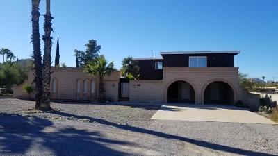 Tucson Single Family Home For Sale: 1131 N Camino De Juan