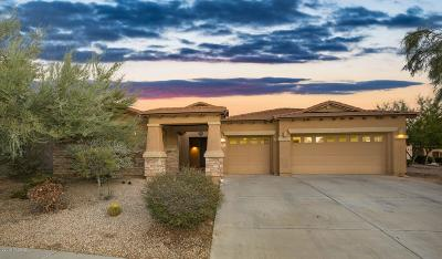 Marana Single Family Home Active Contingent: 12288 N Paseo Penuela
