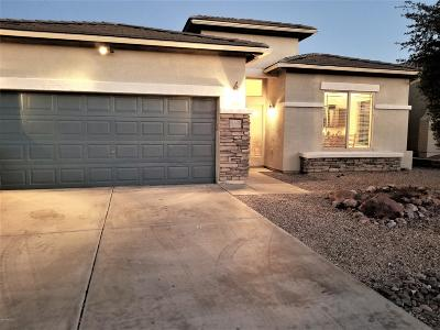 Pima County, Pinal County Single Family Home Active Contingent: 968 N Avenida Jeanine