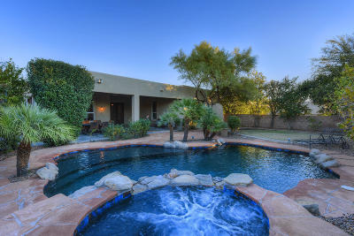Oro Valley Single Family Home For Sale: 13175 N Booming Drive