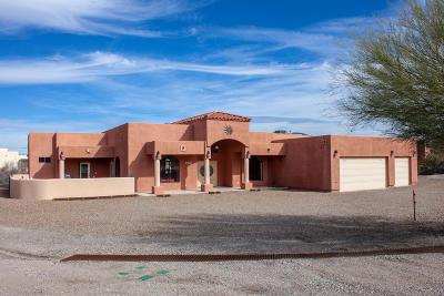 Tucson Single Family Home For Sale: 4930 N Vista Del Cerro Ranch Road
