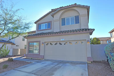 Sahuarita Single Family Home For Sale: 510 E Camino Agua Bonita