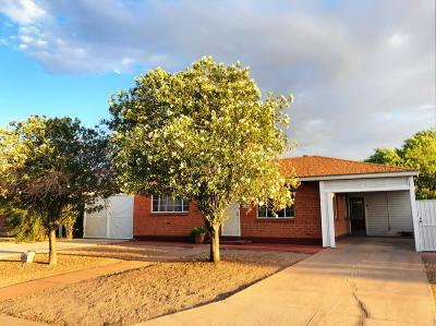 Pima County Single Family Home Active Contingent: 4740 E 10th Street