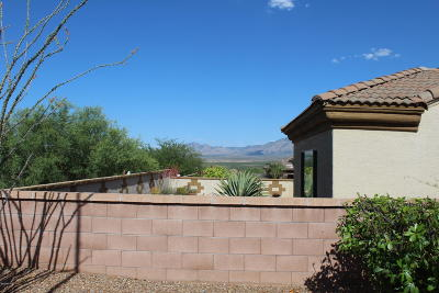 Green Valley Single Family Home For Sale: 2034 W Cactus Run Drive
