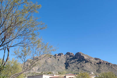 Oro Valley Single Family Home For Sale: 8735 N Sunnyslope Drive