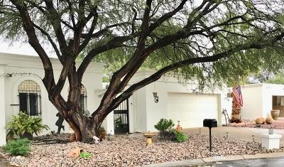 Pima County, Pinal County Single Family Home For Sale: 6622 E Villa Dorado Drive