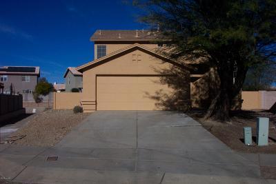 Tucson Single Family Home For Sale: 8232 S Placita Del Plantio