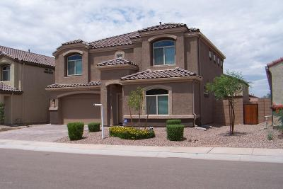 Marana Single Family Home For Sale: 9034 W Grayling Drive
