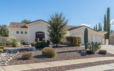 Pima County, Pinal County Single Family Home Active Contingent: 9668 E Waters Edge Place