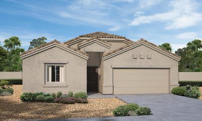 Marana Single Family Home For Sale: 12387 W Reyher Farms Loop