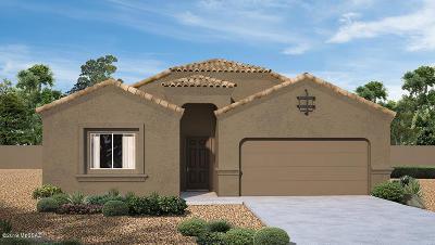 Marana Single Family Home For Sale: 12832 N Benoni Court