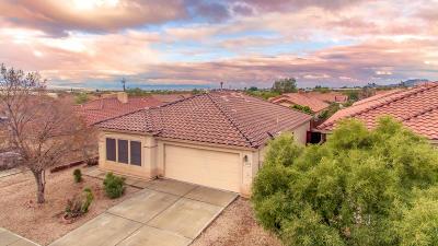 Tucson Single Family Home For Sale: 3909 W Rock Basin Lane