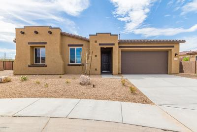 Sahuarita Single Family Home For Sale: 18180 S Still Lea Place