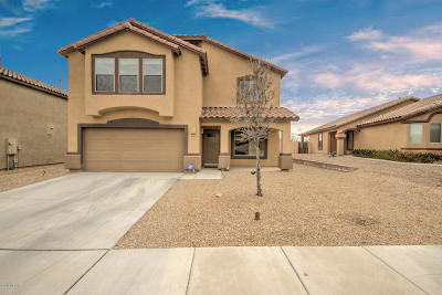 Sahuarita Single Family Home Active Contingent: 161 W Calle Paso Suave