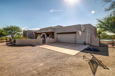 Tucson Single Family Home For Sale: 11580 E Spanish Ridge Place