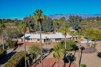 Tucson Single Family Home For Sale: 3371 E Camino Campestre