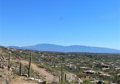 Tucson Residential Lots & Land For Sale: 4149 E Playa De Coronado #64