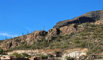 Tucson Residential Lots & Land For Sale: 4133 E Playa De Coronado #65