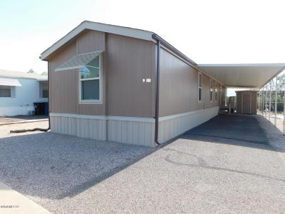 Pima County Manufactured Home For Sale: 2305 W Ruthrauff Road