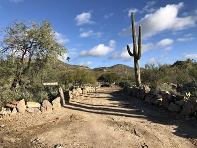 Tucson Residential Lots & Land Active Contingent: 14020 N Gecko Canyon Trail