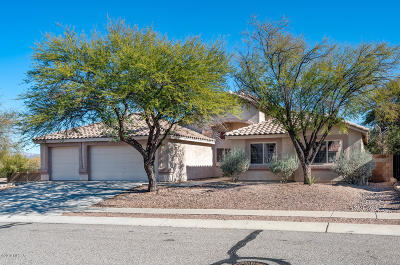 Pima County, Pinal County Single Family Home Active Contingent: 623 S Sierra Nevada Drive