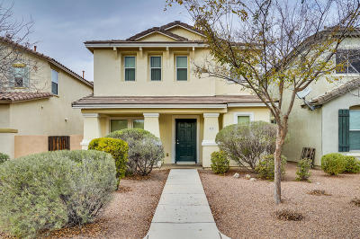 Sahuarita Single Family Home For Sale: 673 W Paseo Celestial