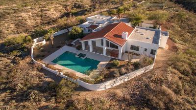 Tucson Single Family Home For Sale: 7052 S Avenida Del Potrillo