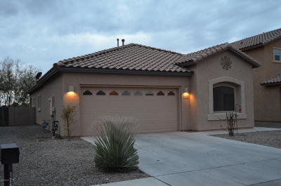 Marana Single Family Home For Sale: 12685 N Greenberry Drive