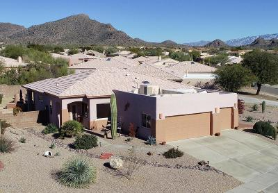 Pima County, Pinal County Single Family Home For Sale: 13053 N Pier Mountain Road