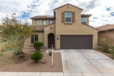 Pima County, Pinal County Single Family Home For Sale: 5587 S Sunrise Peak Road