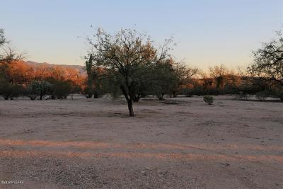 Tucson Residential Lots & Land For Sale: 9700 E Walnut Tree Drive
